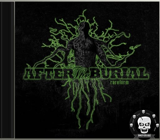 The Fractal Effect After The Burial